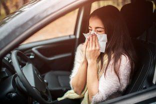 Evita que la alergia te mate al volante